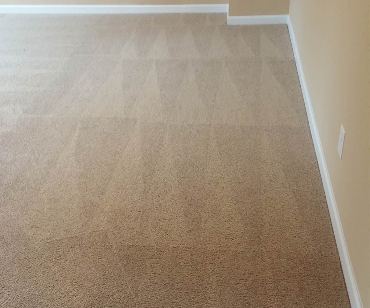 Carpet Cleaning & Stain Removal