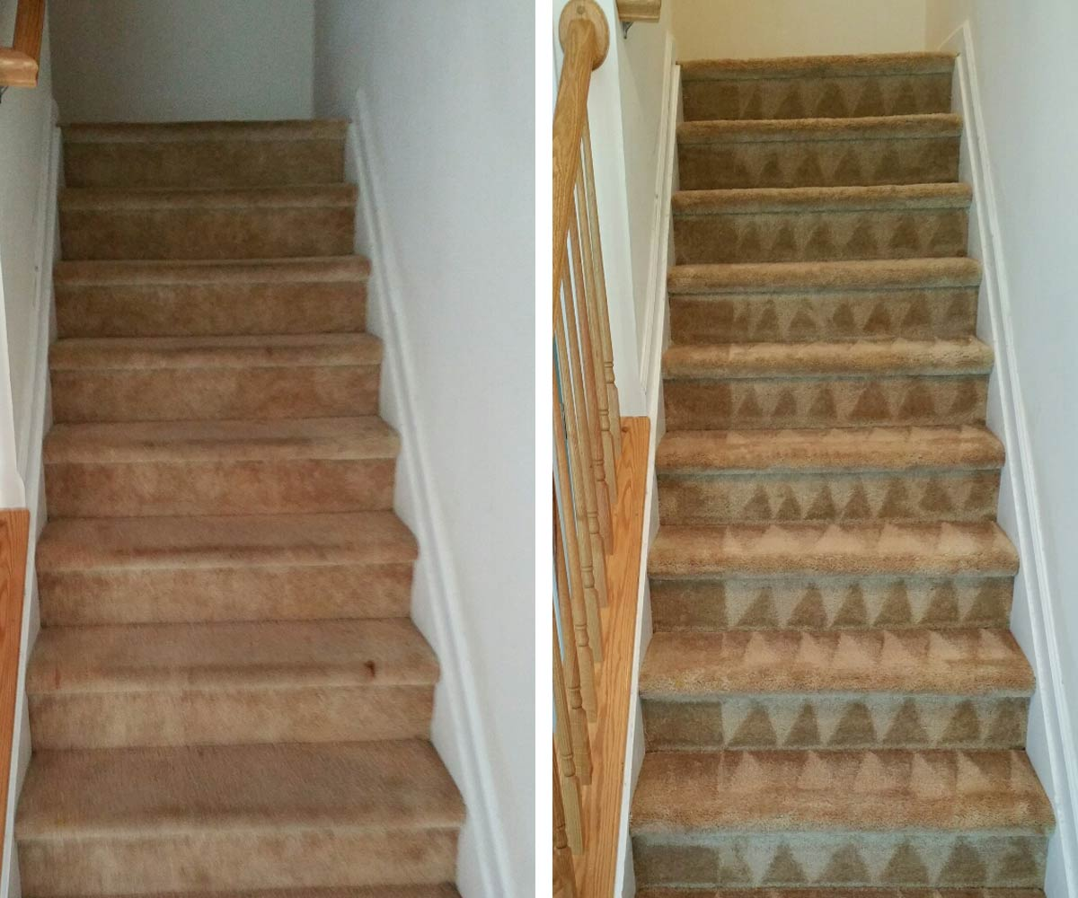Carpet Steam Cleaning in Raleigh