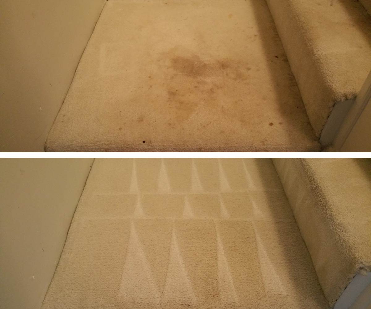 Carpet removal s spilled coffee on carpet removing for How to clean floor stains