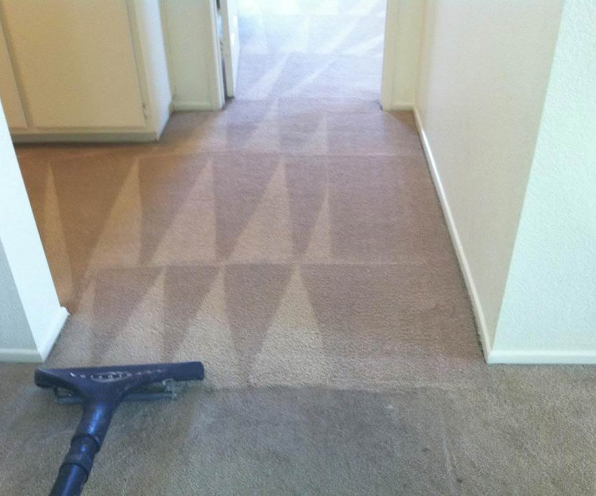 Steam Carpet Cleaning in Raleigh