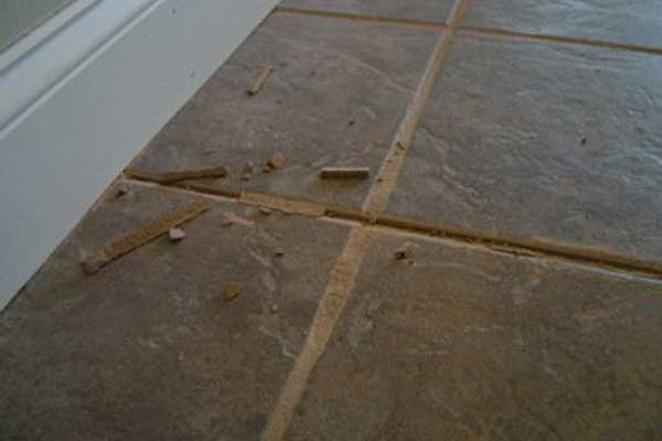 Tile & Grout Cleaning | Contour Cleaning
