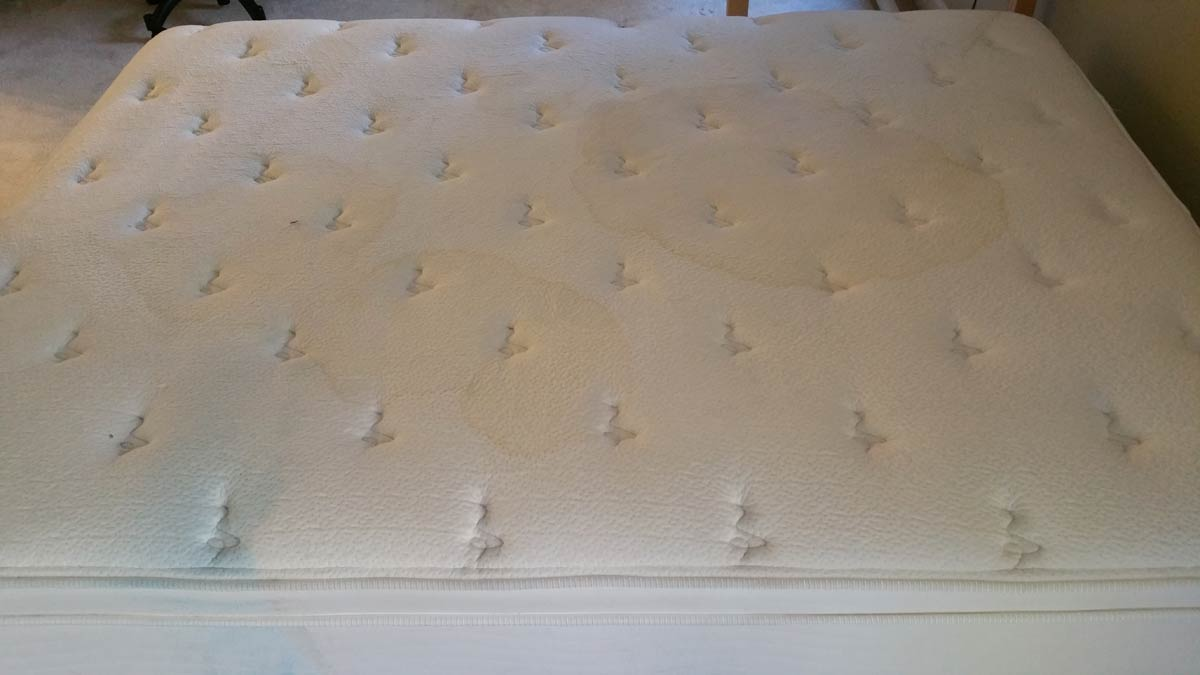 Ottawa Mattress Cleaning Services | Ottawa Homes Services Group